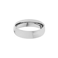 Domed Stainless Steel Matte Finish Ring - Narrow